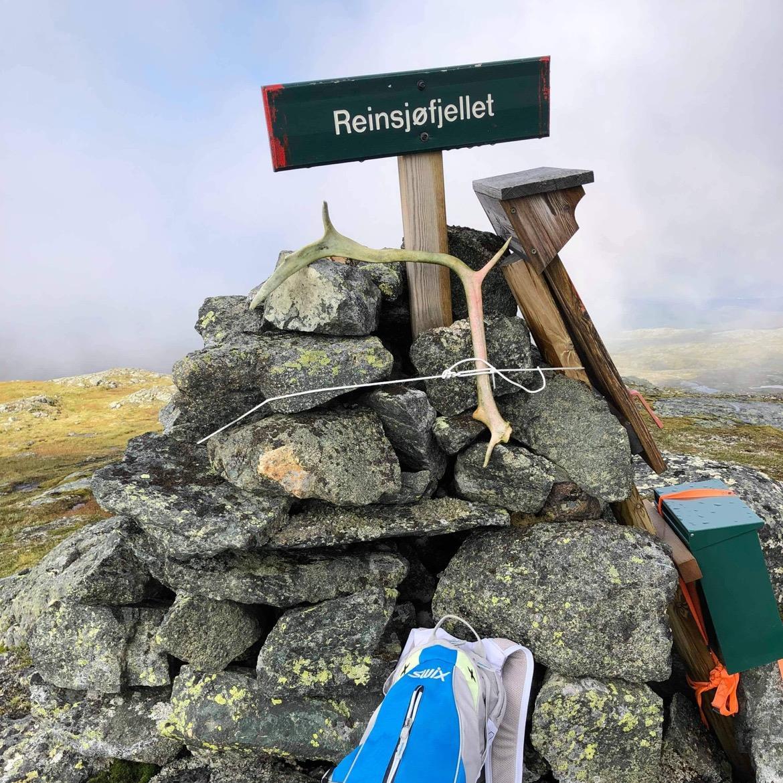 Turforslag: Reinsjøfjellet 726 moh.