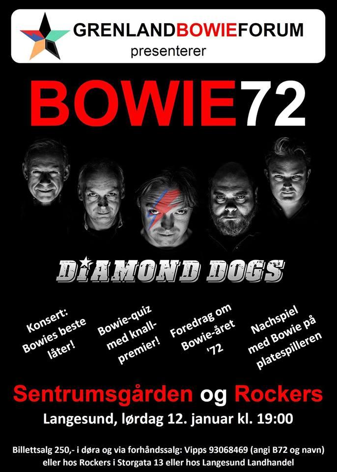 BOWIE72 i Langesund, © Lars-André Tokheim