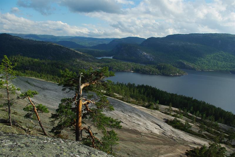 Bronberga og Jyddhomsfjell - Vest-Telemark.no