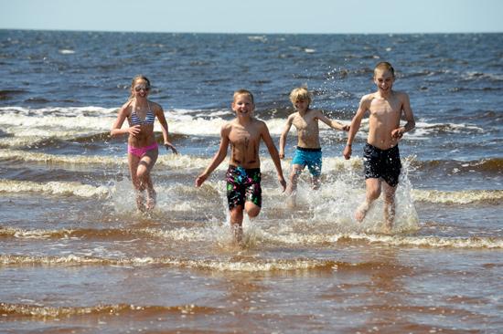 På Gullbrannagården utanför Halmstad ligger sandstranden bara 600 meter bort.