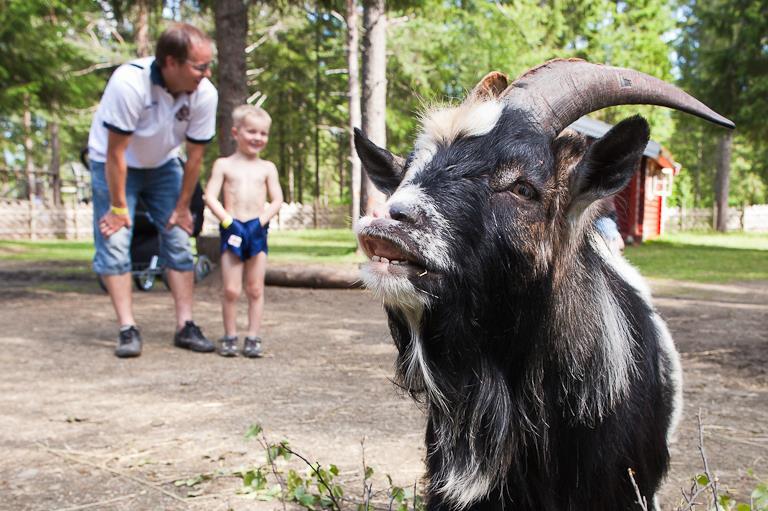 ÅPEN PARK - Namsskogan Familiepark