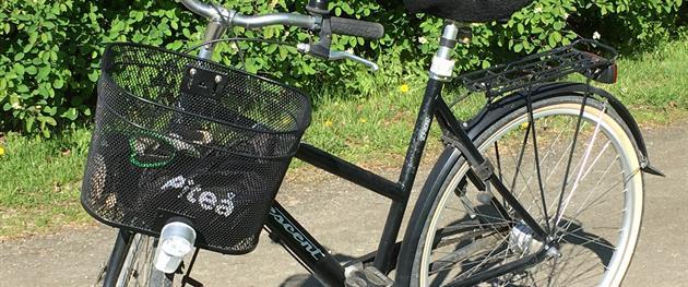 Cykel, Katarina Johansson