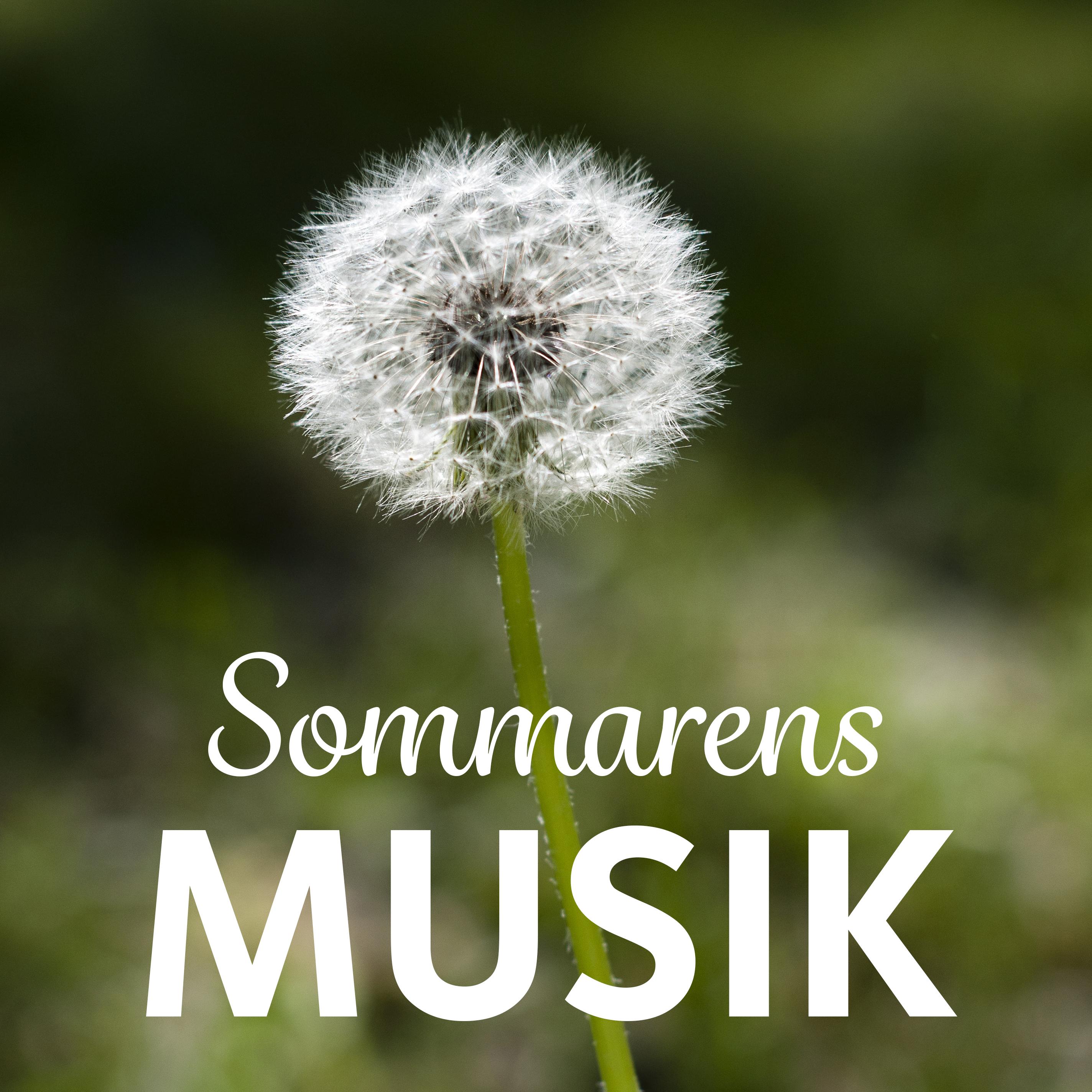 © Svenska kyrkan