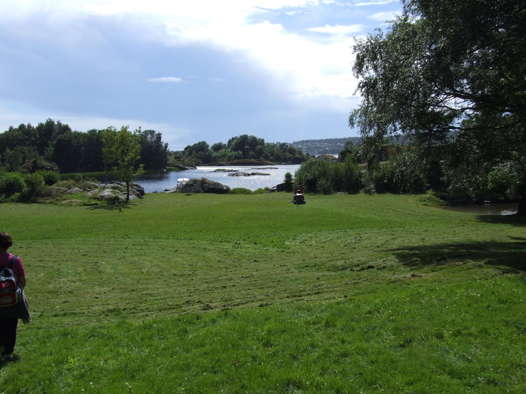 Den fine grassletta på Siktesøya. Her er det god plass for lek og avslapning
