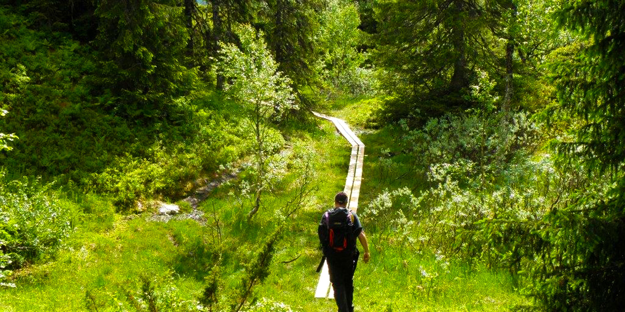 Ismenningen Lodge & Cabin rental fabulous hiking routes nearby. Copyright: Ismenningen
