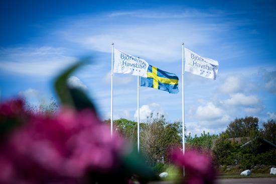 På Björkängs Havsbad mellan Varberg och Falkenberg hittar du allt du behöver för en skön semester - stor affär, minigolf, fotbollsplan, boulebana och barnklubb.