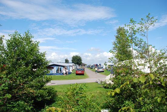Gullbrannagården är en femstjärnig familjecamping 13 km söder om Halmstad och här finns 300 tomter för tält och husvagnar - platserna är 100-130 kvm stora och de flesta har vatten och avloppsanslutning