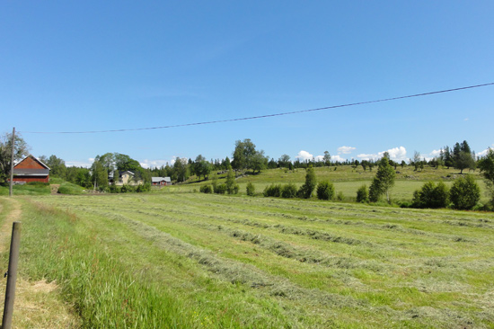 Ulvanstorp ligger i Hallands inland, mitt ute i naturen men endast 20 minuter från Ullared.