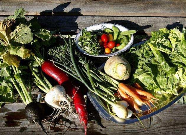 Gemüse in den grünen, Mattesbäcken