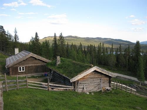 Startpunktet for numedalshovda går fra Håvardsrud Seterliv. Kombiner gjerne turen med et besøk på setra.  , © Hege Næss