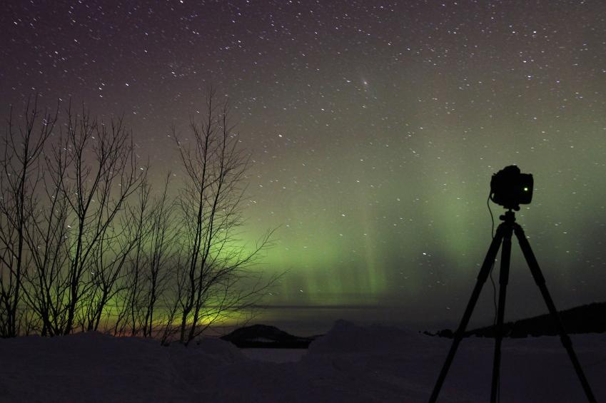 © Pure Lapland