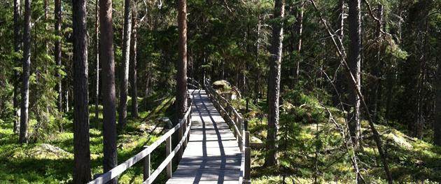 Fåröns friluftsområde, Piteå Turistcemter