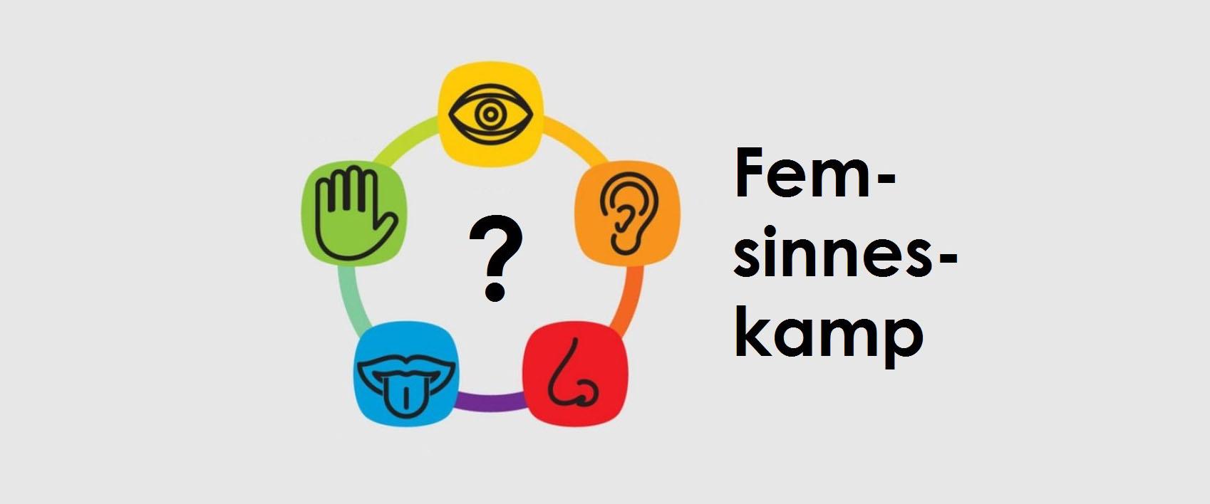 Fem-sinnes-kamp