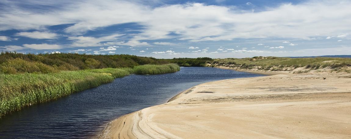 Fotovandring i Gullbranna naturreservat