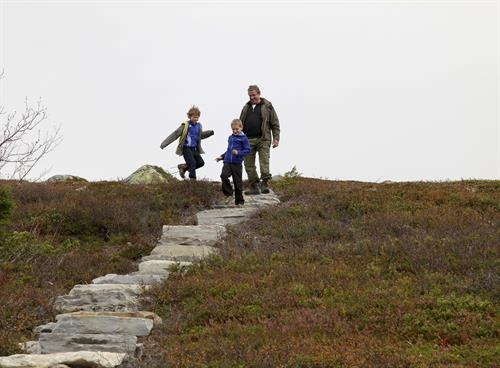 Solstien på Hardangervidda, © Trond Stegarud
