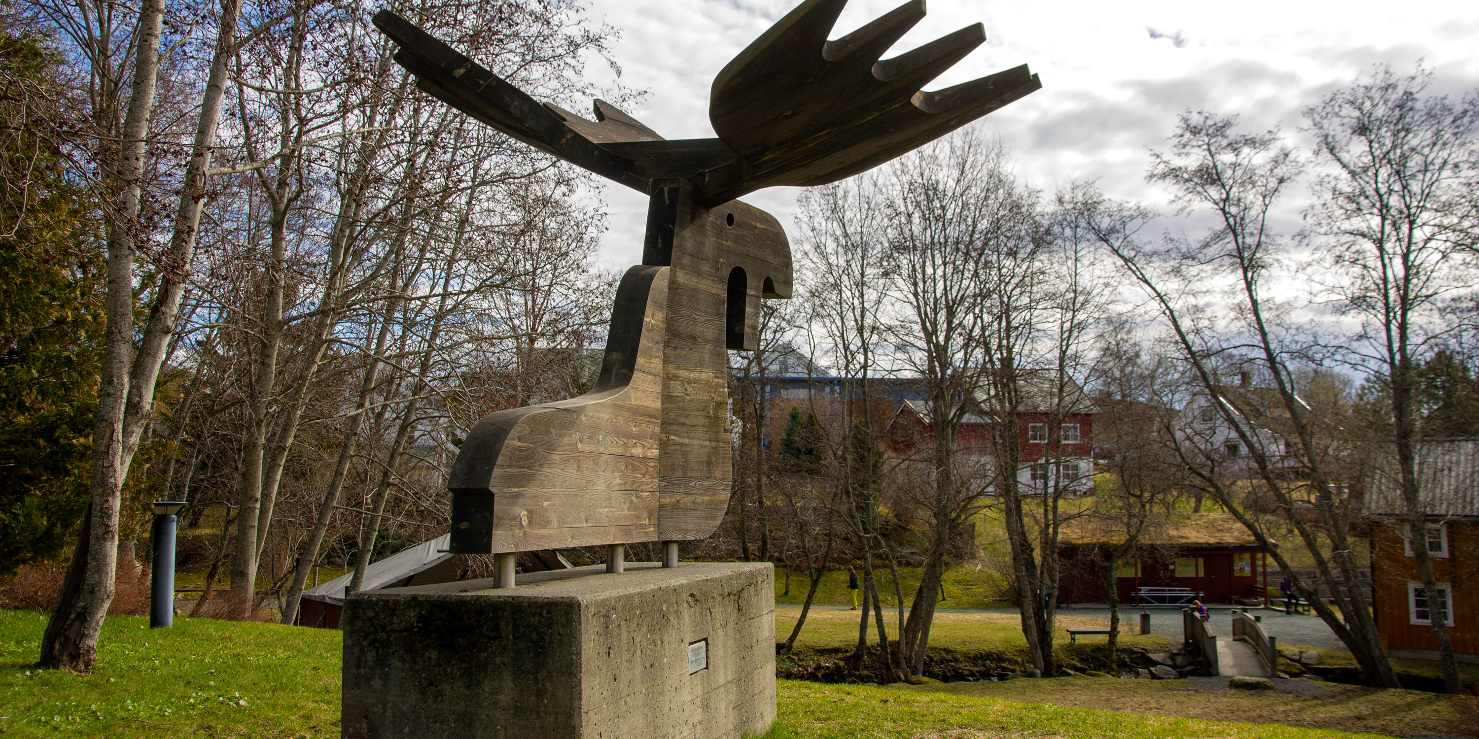 The moose presides over the park at the top of the Amphi. Copyright: André Moore