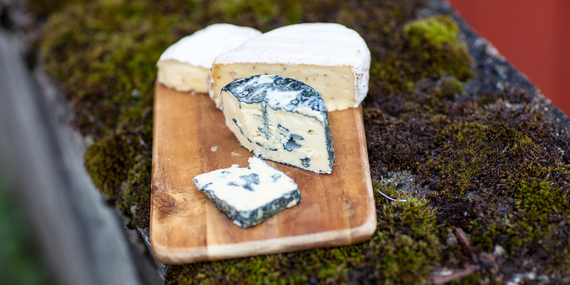 Awardwinning cheese from Gangstad Farm. Copyright: WilLee-Wright