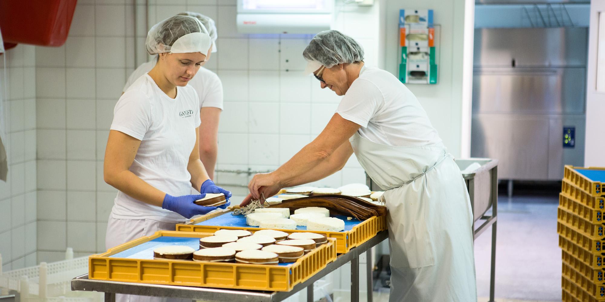Inderøy Gangstad foto WilLee-Wright arbeid med osten i produksjonsrommet 2x1. Copyright: WilLee-Wright
