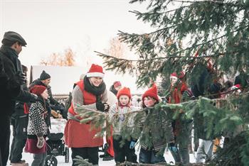 Jul på Stenberg