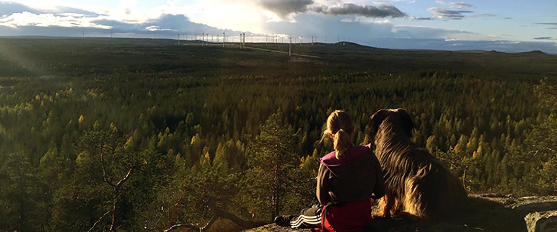Utsikten fascinerar stor, liten och fyrbenta Foto: Ann-Sofie Boman
