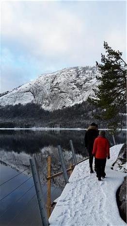 Vandring på brua, Hamaren