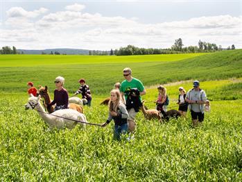Akershus with children - Your Akershus - akershus com