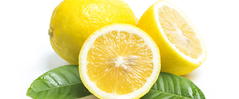 Lemon Tree - citron bild 1170x488