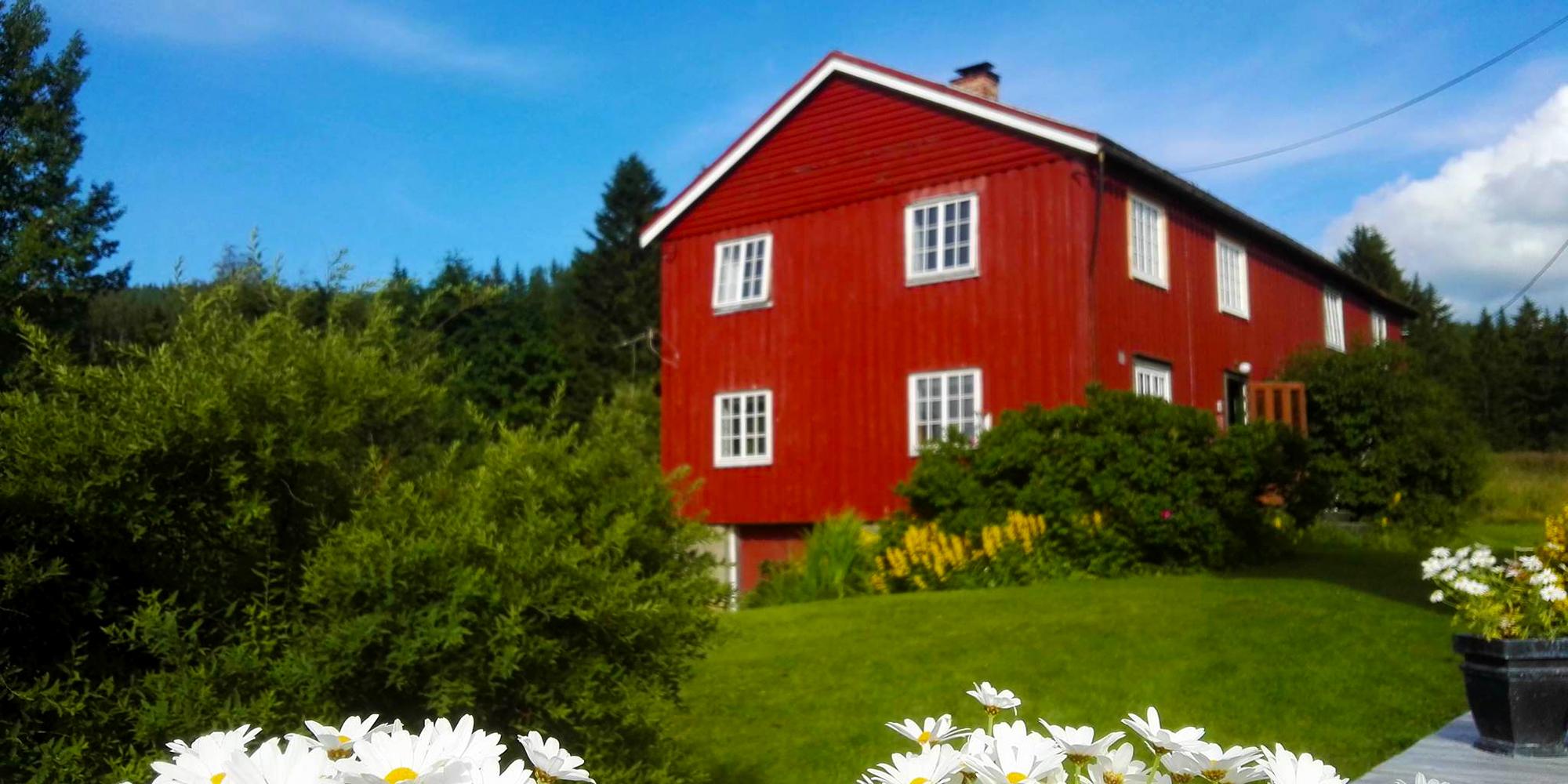 Troset i Levanger Kommune: Kårbiligen. Copyright: Heidi Troset