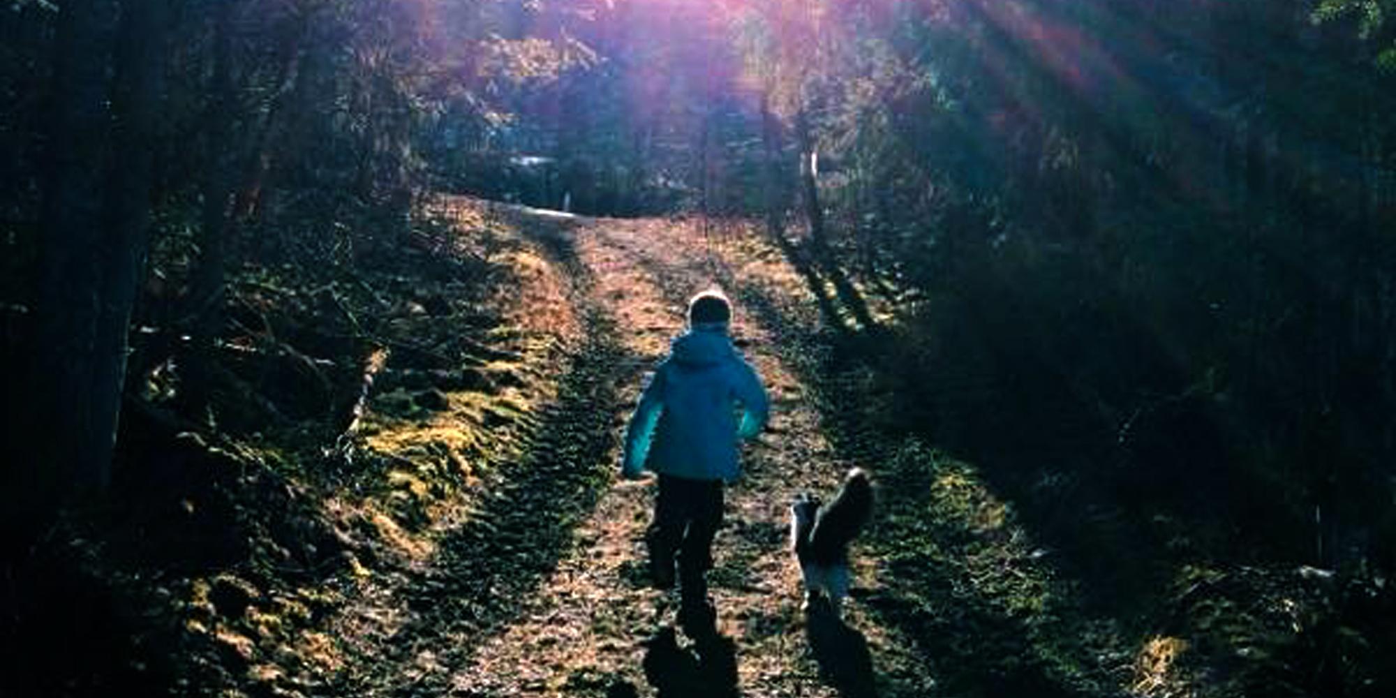 Troset i Levanger Kommune: Vandring i skogen. Copyright: Heidi Troset