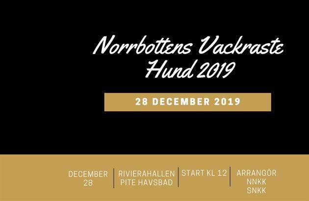 Affisch Norrbottens Vackraste Hund 2019
