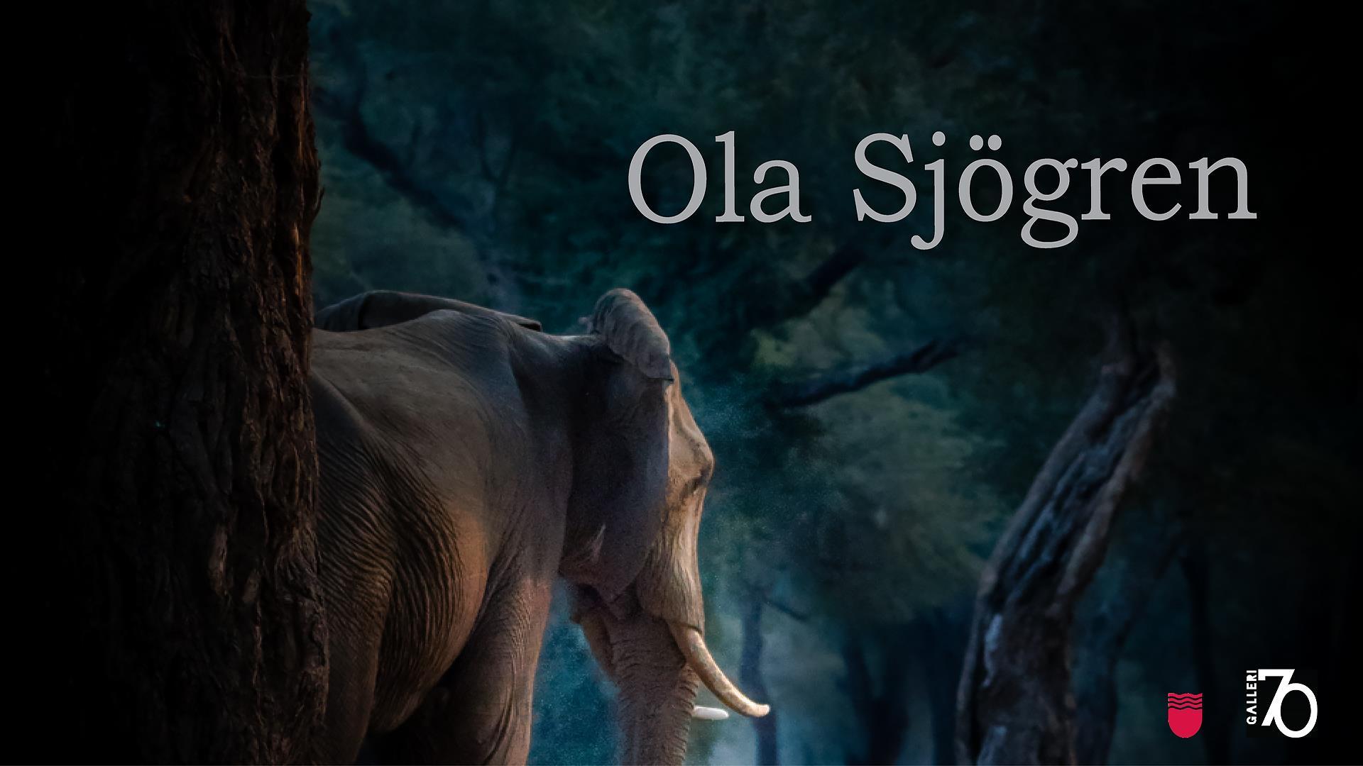 Ola Sjögren på Galleri70