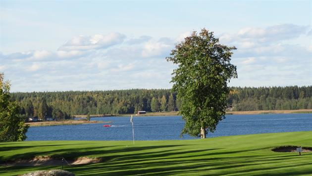 PIteå golf utsikt, Piteå golfklubb