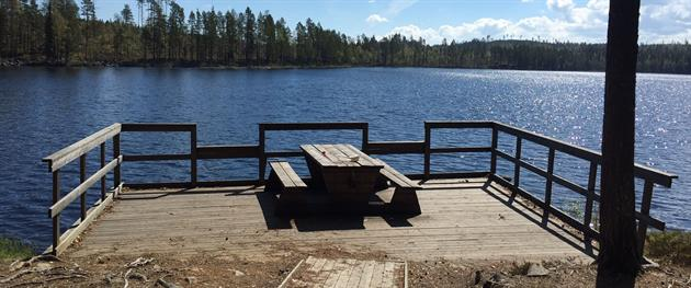 Pithoursträsket accessible fishing spot, Terese Lindbäck
