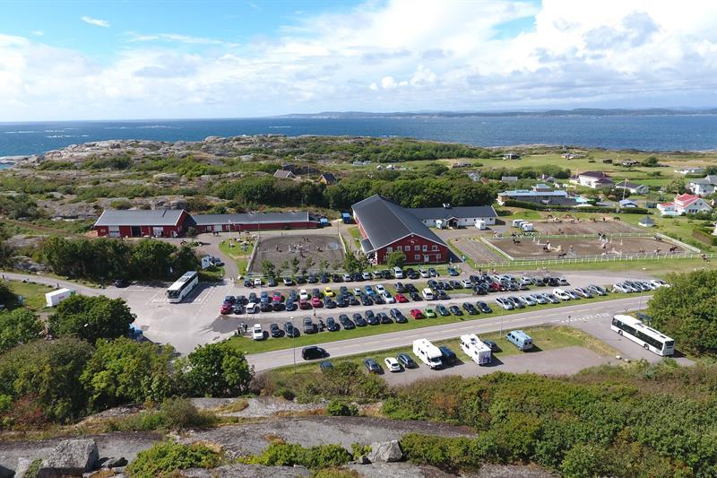 Activities - See and do - Tønsberg - visitvestfold com