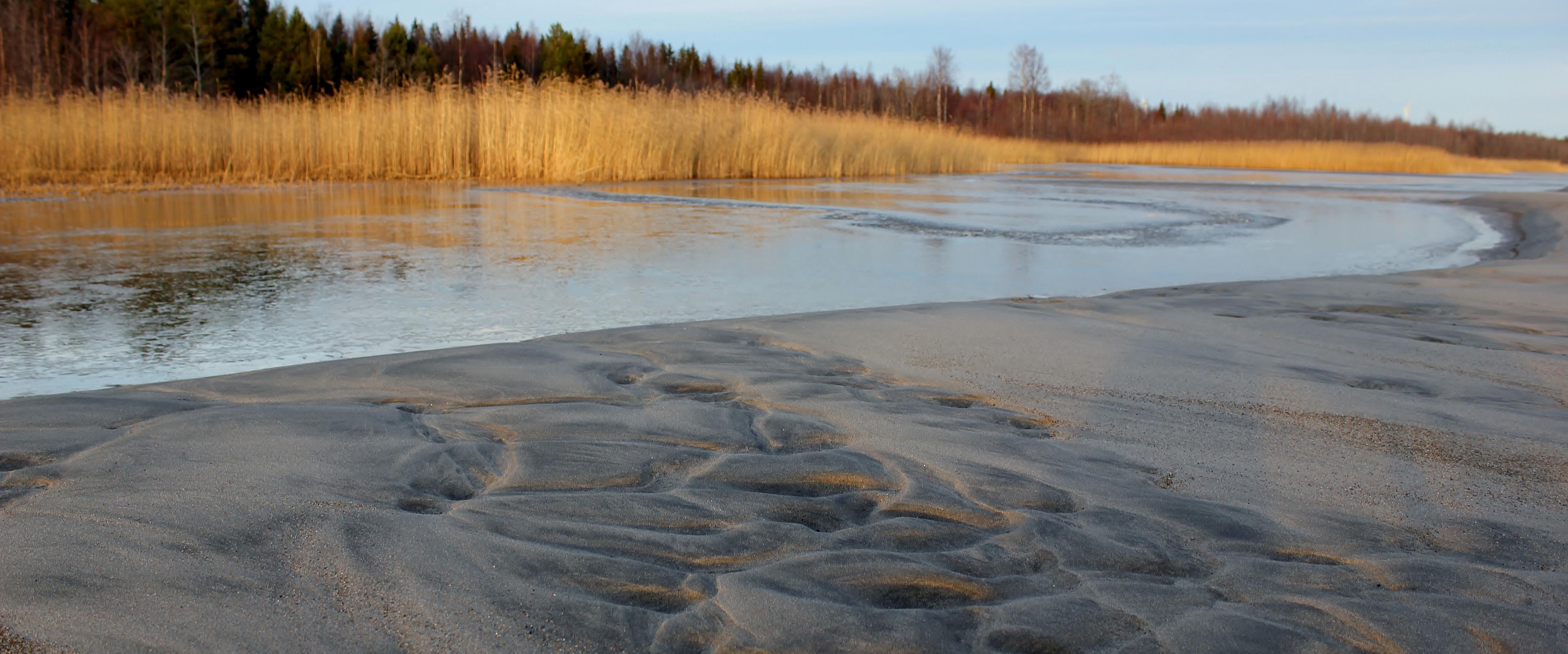Sandängesstranden höst