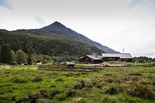 Selstali Seter ligger i Gausdalen, ved foten av Gaustatoppen, © Fotograf Jacobsen