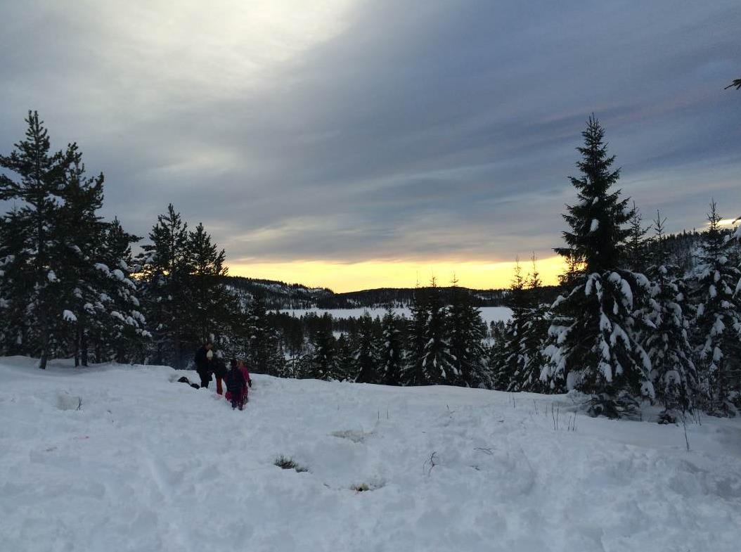 Svanstul, Telemark
