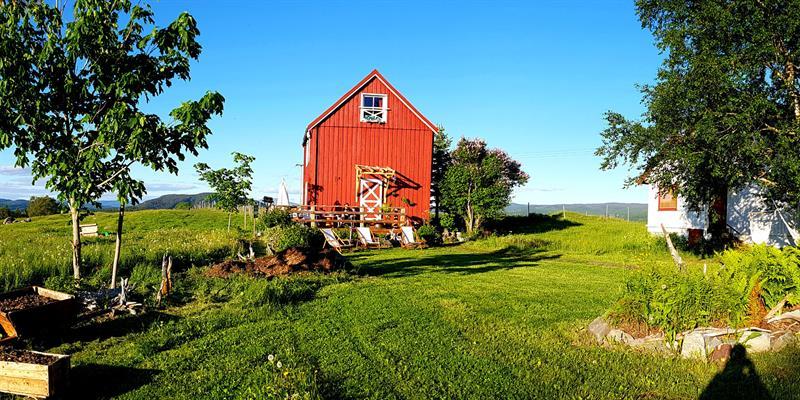Gran Nordre farm in Snåsa: the