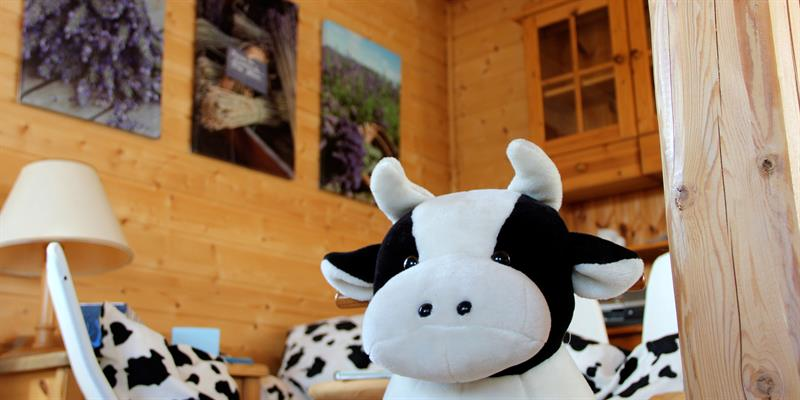 Gran Nordre farm in Snåsa: inside the