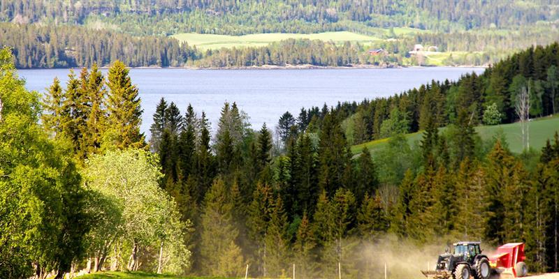 The landscape surrounding the Gran Nordre in Snåsa. Copyright: Gran Nordre