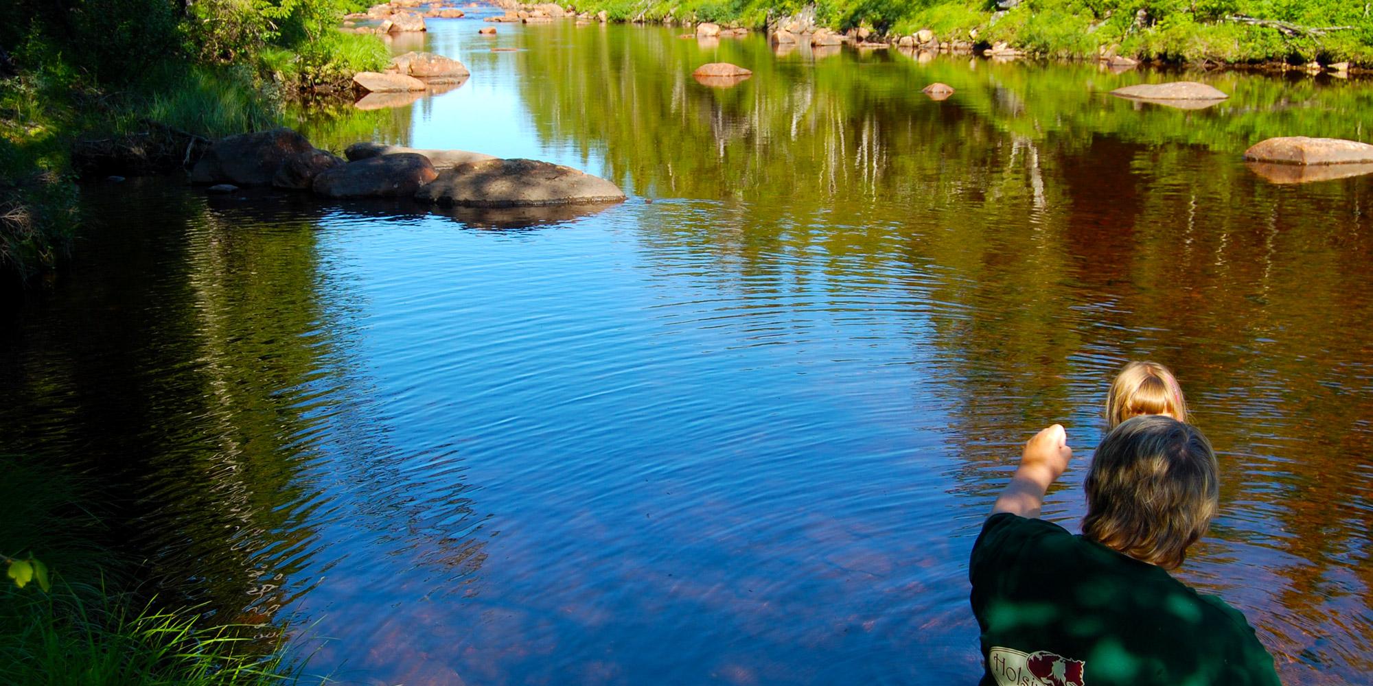 River close to Holsingseteren summer mountain farm in Snåsa. Copyright: Holsingseteren