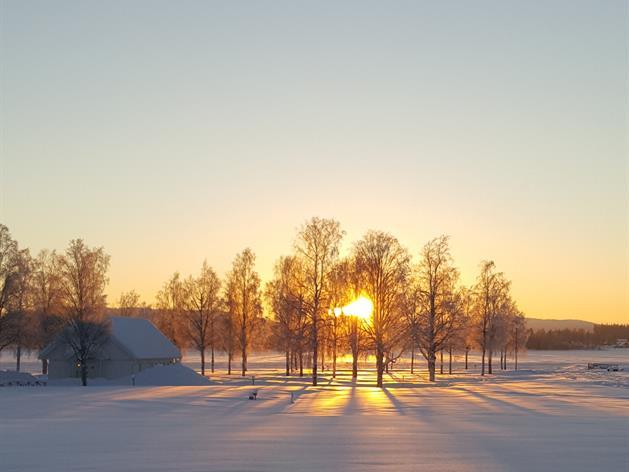 Utsikt över älven i vintersol på Storstrand, Storstrand