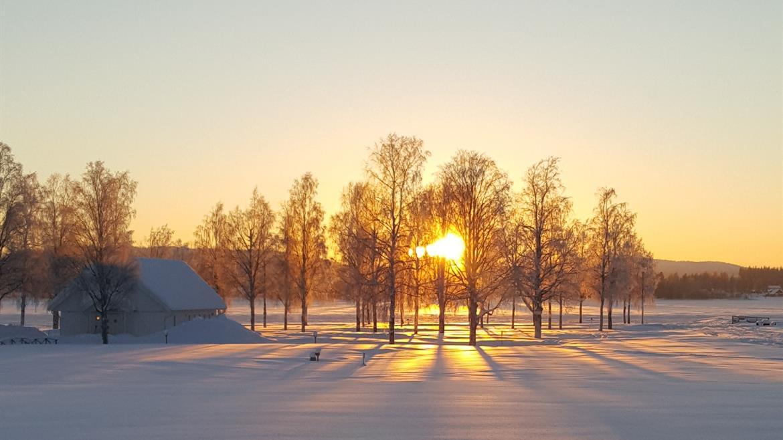 Utsikt över älven i vintersol på Storstrand