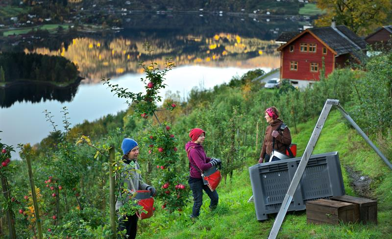Oktoberhelg i Ulvik