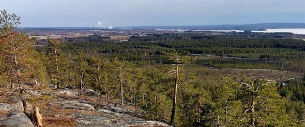 Utsikt från Falkberget, Maria Söderberg