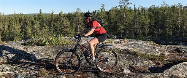 Ta dig till Igeltjärnsbergets topp via klipphällar, Ann-Sofie Boman