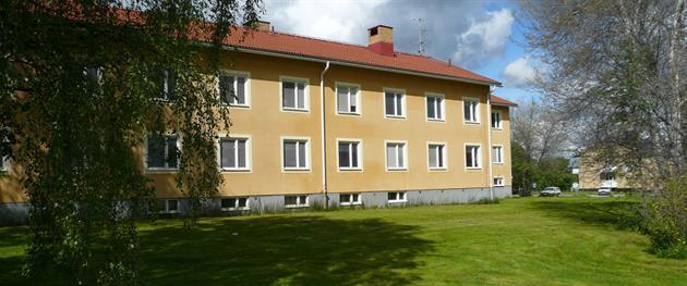 Vandrarhemmet vid Campus Holmen, Sofia Wellborg