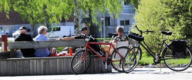 Cykelpaus, Stina Eriksson
