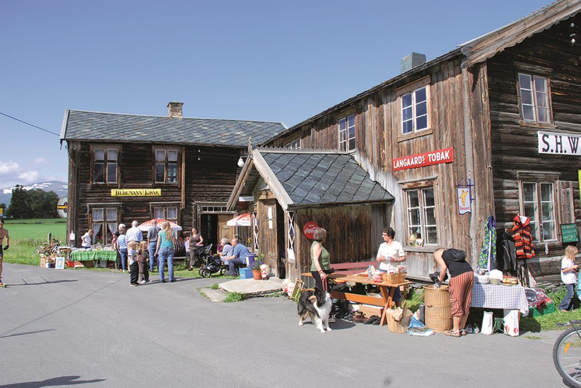 Vognildsbua landhandleri og cafe
