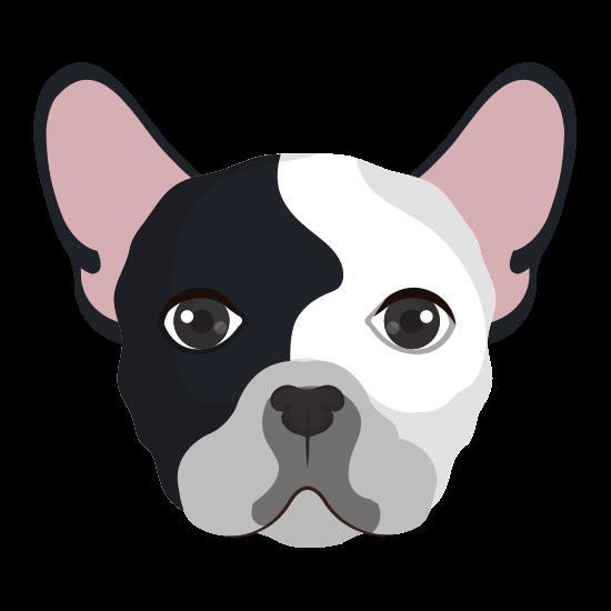 Hundskoj